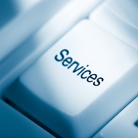 Professional and IT Services